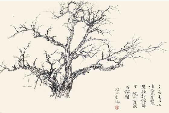 譚鴻斌作品《石榴樹》35x50cm