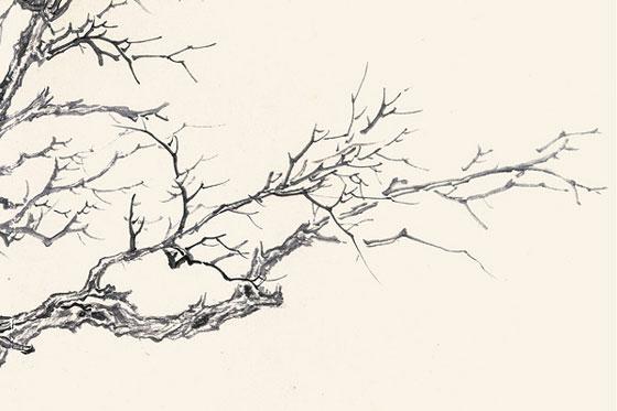譚鴻斌《石榴樹》35x50cm2
