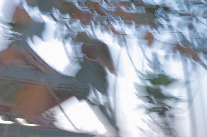 攝影作品:千鳥飛舞/Thousand birds flying/1 Digital photography 8x12吋/2017