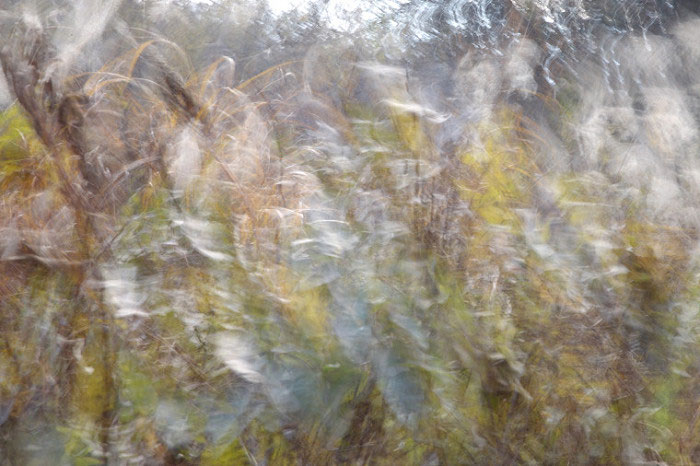 攝影作品:靈/Spirit/1 Digital photography/8x12吋/2017